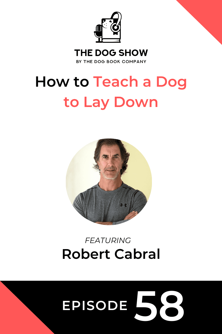 How to Teach a Dog to Lay Down with Robert Cabral (Episode 58)