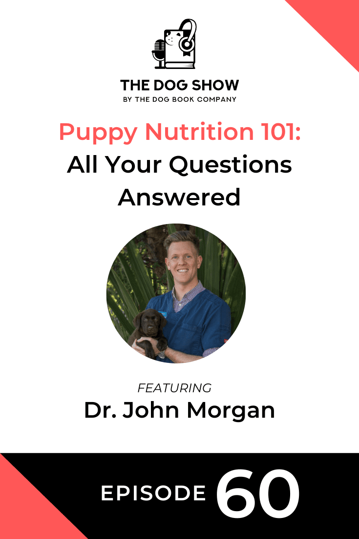 Puppy Nutrition 101: All Your Questions Answered with Dr. John Morgan (Episode 60)