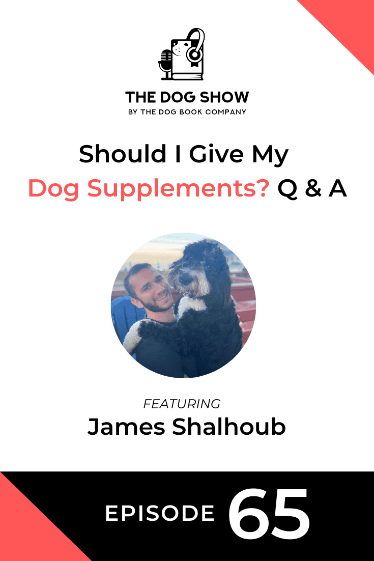 Should I Give My Dog Supplements? Q & A With Finn Co-Founder James Shalhoub (Episode 65)