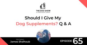 Should I Give My Dog Supplements? Q & A - WebsiteFacebook