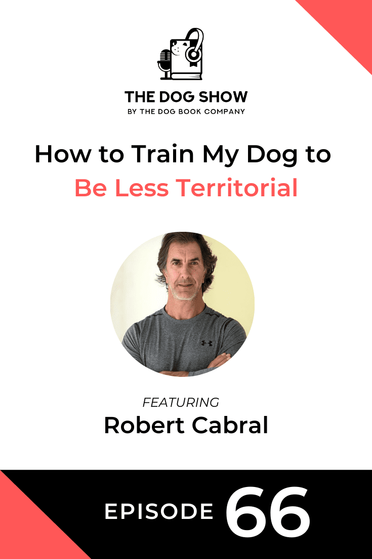 How to Train My Dog to Be Less Territorial with Robert Cabral (Episode 66)