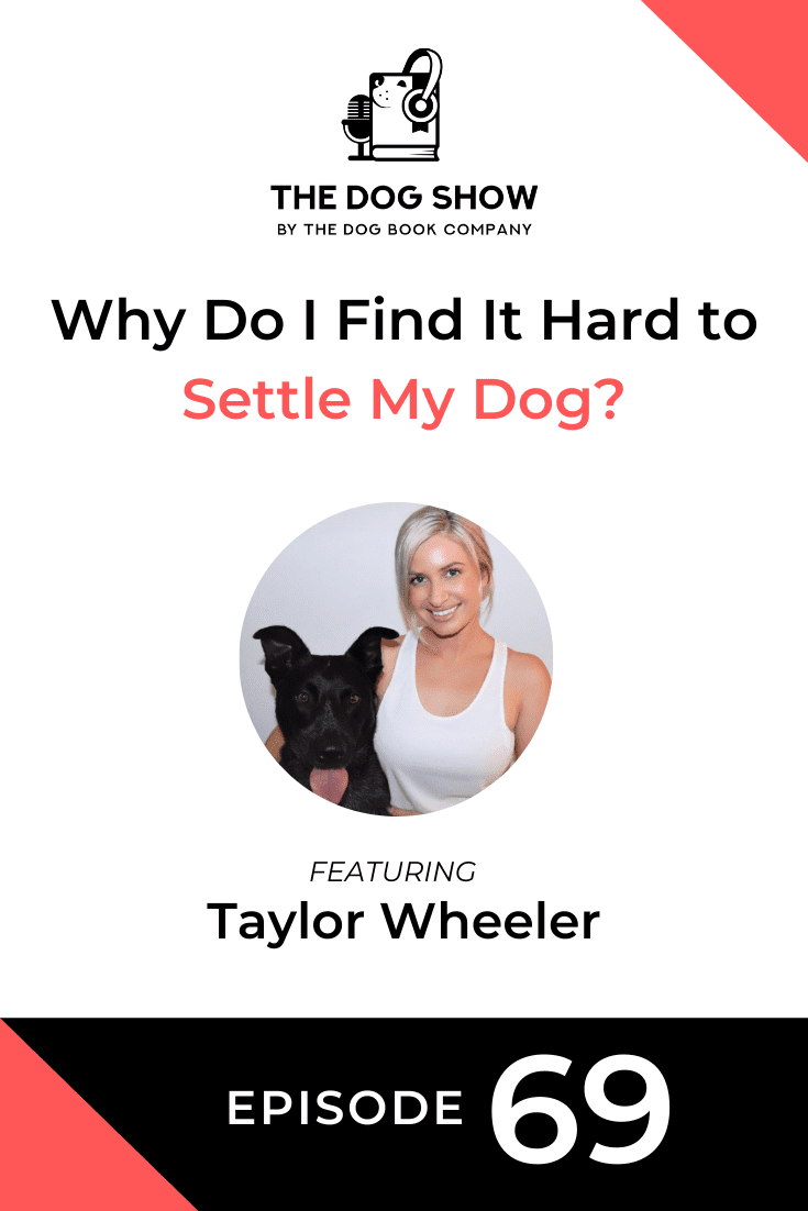 Why Do I Find It Hard to Settle My Dog? Featuring Taylor Wheeler (Episode 69)